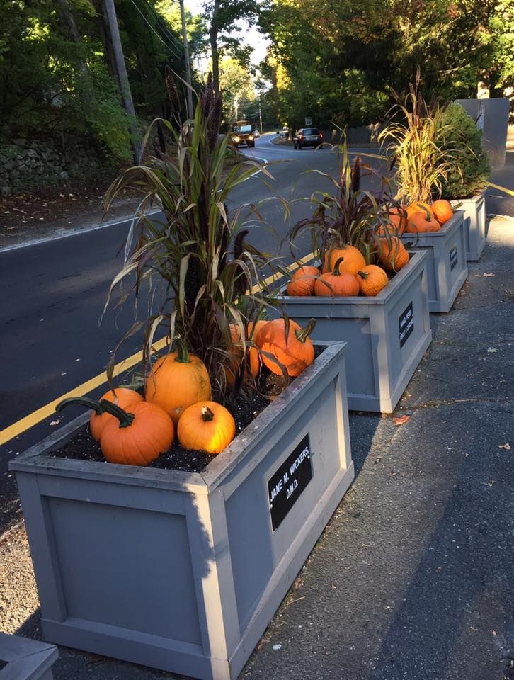 Fall Planters