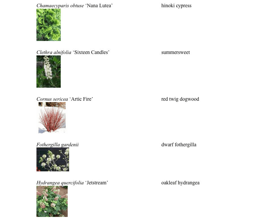pgp_plants2-e1557524378409.png