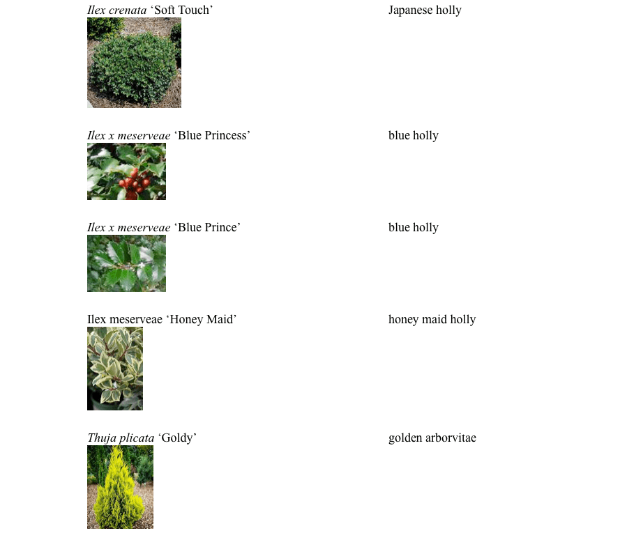 pgp_plants3-e1557525419297.png