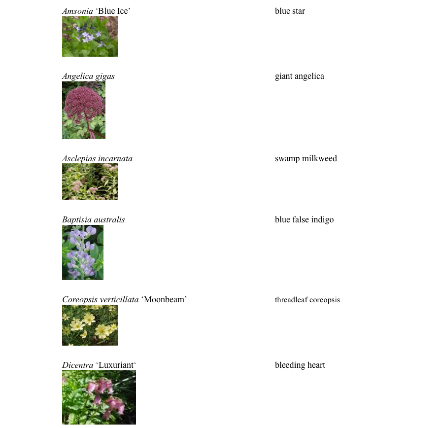 pgp_plants6-e1557524491496.png